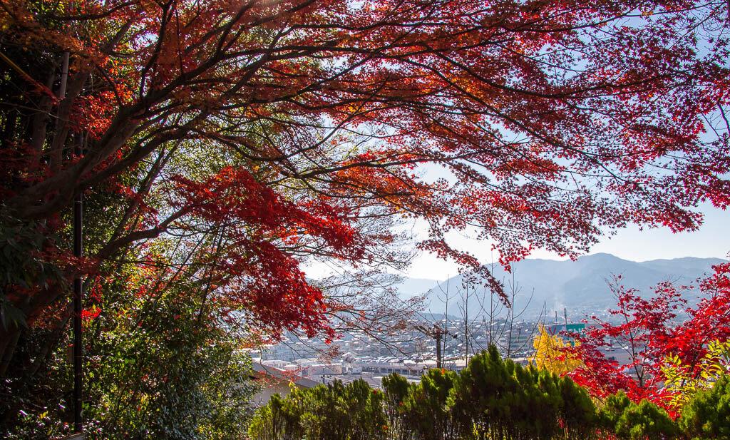 Осенние краски на прогулке Накасендо