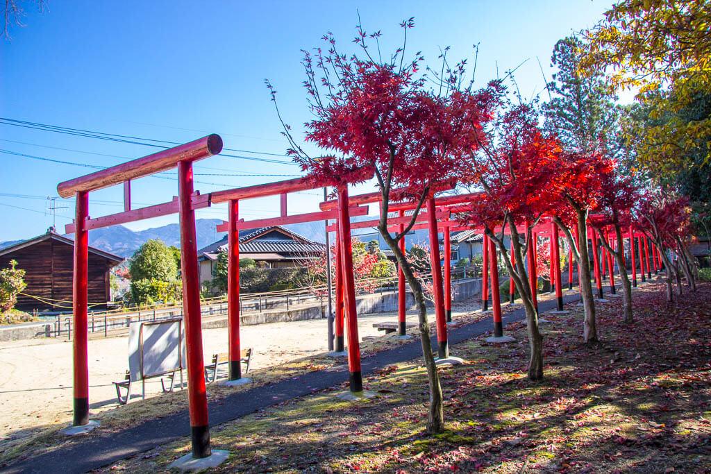 Ворота Тори на тропе Накасендо в Накацугаве