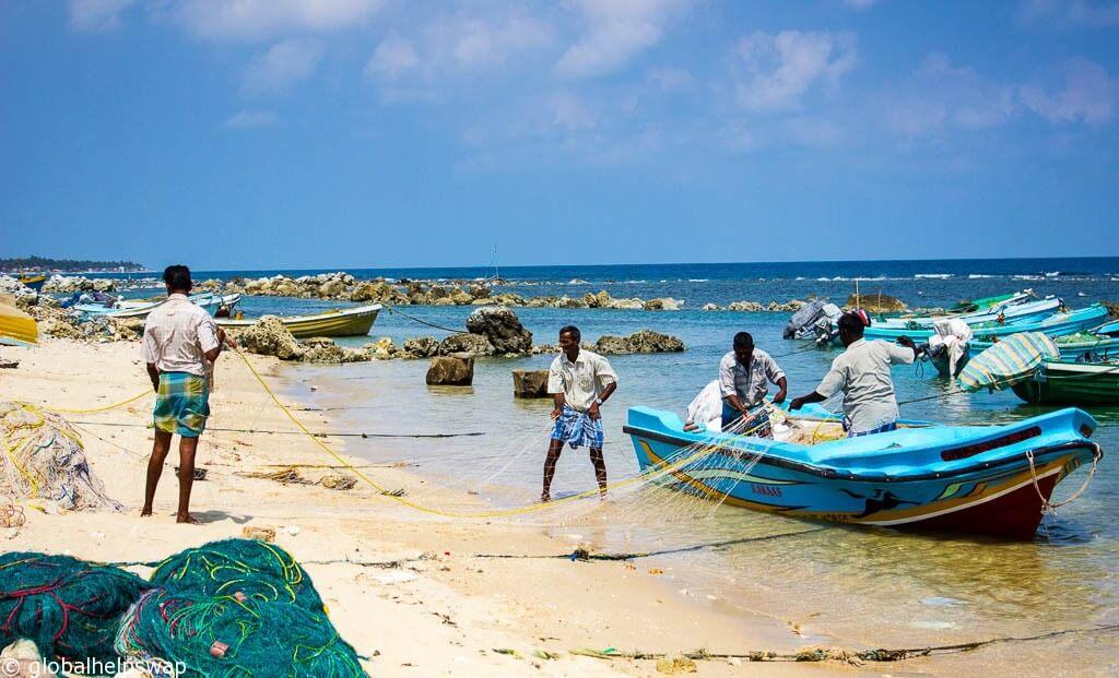 Лучшие места для посещения на Шри-Ланке