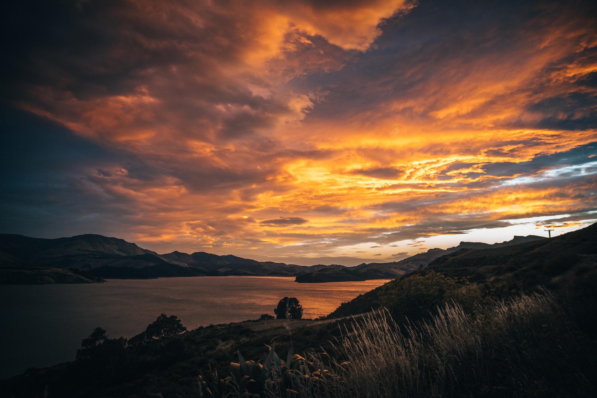 изоляция в Новой Зеландии