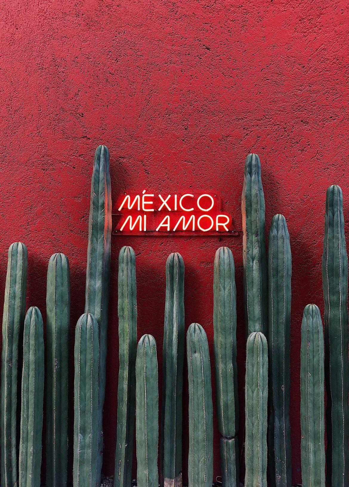 Как оставаться в безопасности в Мехико