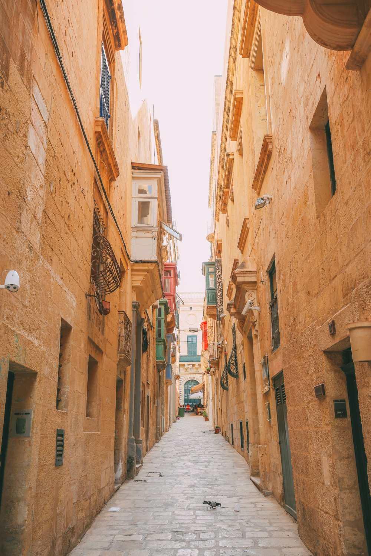 Чем заняться на Мальте и Гозо (17)