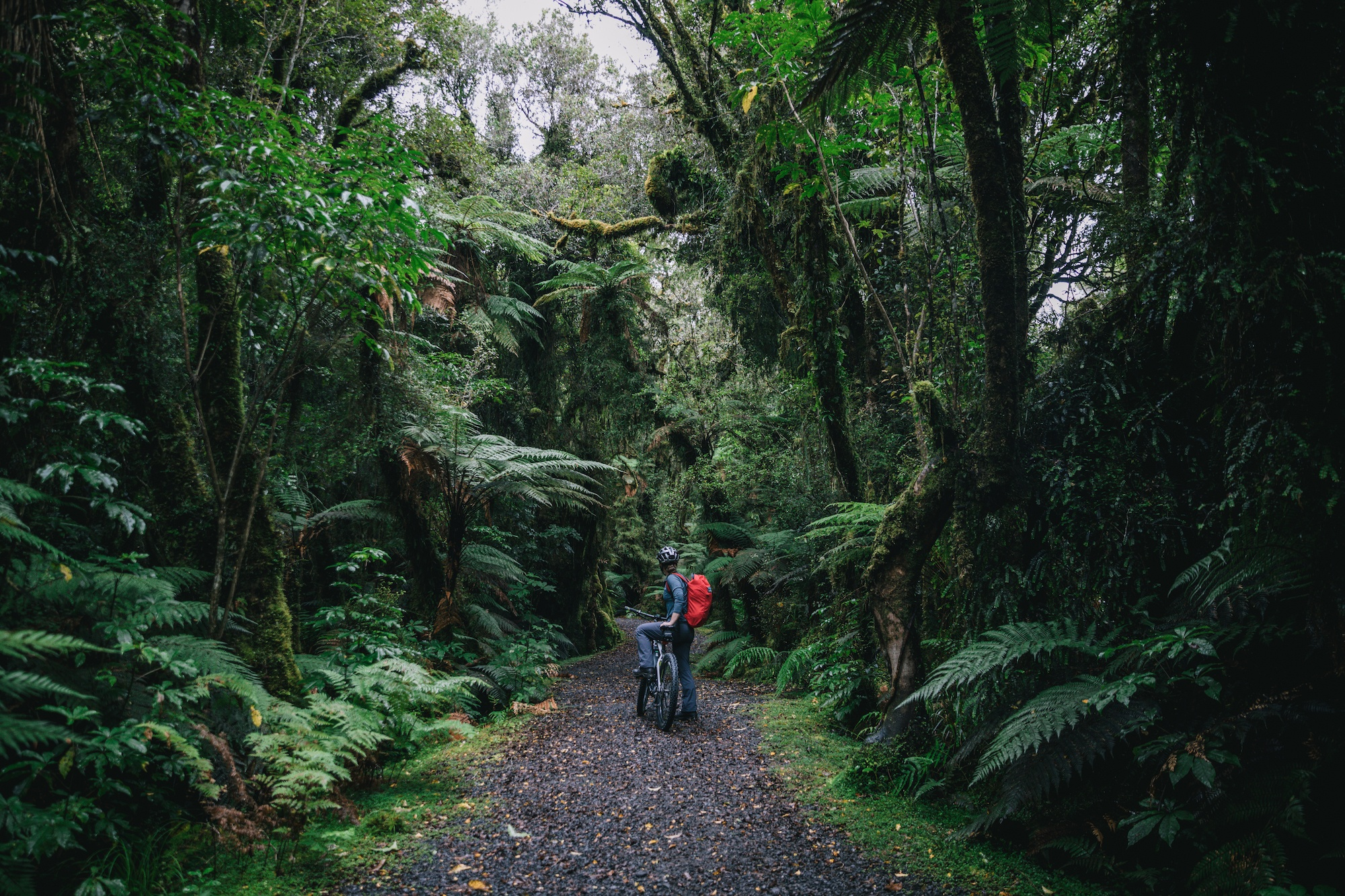 Западное побережье Новой Зеландии
