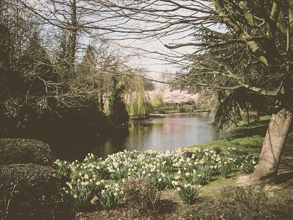 11 лучших парков в Западном Лондоне
