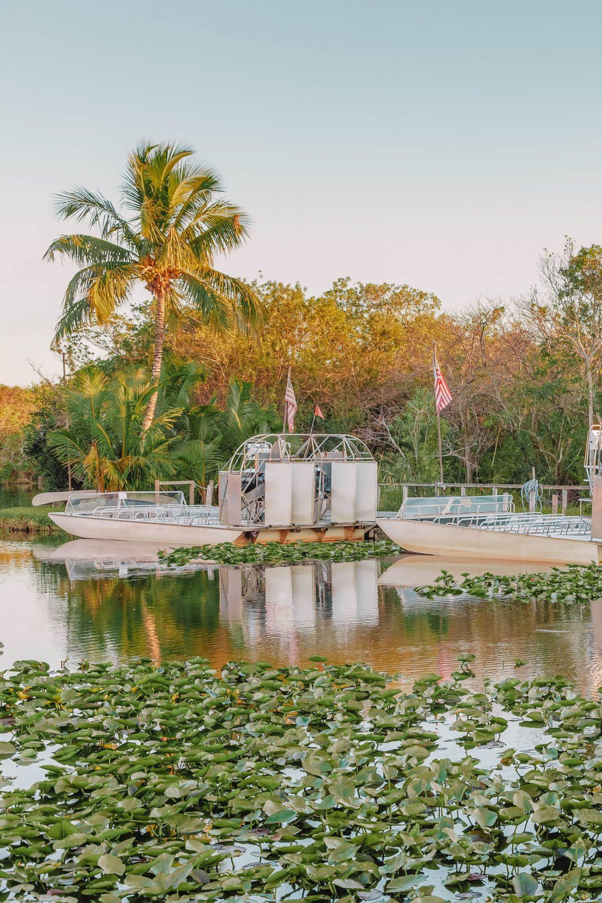 10 лучших занятий в Эверглейдс, Флорида